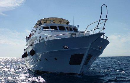 Custom Dive Boat Red Sea